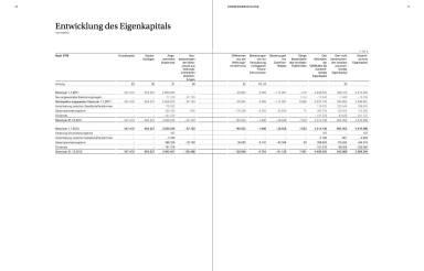 Entwicklung des Eigenkapitals