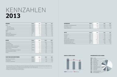 Polytec Geschäftsbericht 2013 Kennzahlen