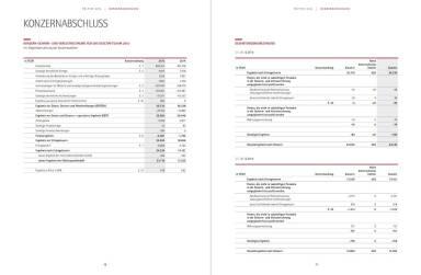 Polytec Geschäftsbericht - Konzernabschluss